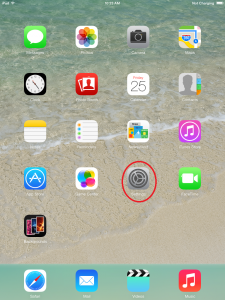 iPad: Press the settings button on the home screen
